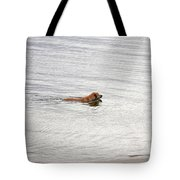 3 - Golden Lab Lovin Life Tote Bag