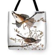Audubon: Sparrow, (1827-38) Tote Bag