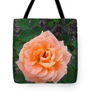Australia - Orange Rose Flower Tote Bag