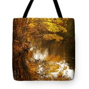 Autumn Reflected Tote Bag