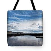 Back Beach 2 - Lyme Regis Tote Bag