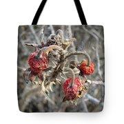 Beach Rose Hips - Rosa Rugosa Tote Bag