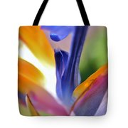 3 Bird Of Paradise Macro Tote Bag