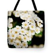 Bridal Veil Spirea Tote Bag