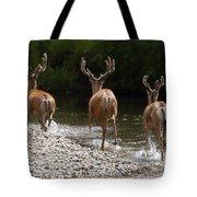 3 Bucks Tote Bag