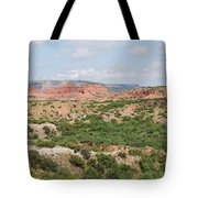 Caprock Canyon State Park  Tote Bag
