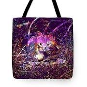 Cat Kitten Mieze Red Mackerel Tabby  Tote Bag