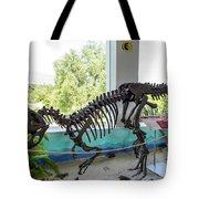 Centro De Investigaciones Paleontologicas Tote Bag