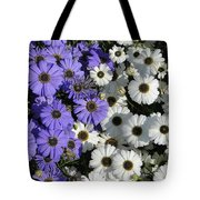 Cineraria Tote Bag