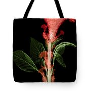 Cockscombs Flower, X-ray Tote Bag