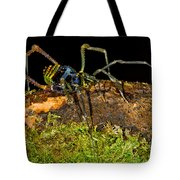 Colorful Harvestman Tote Bag