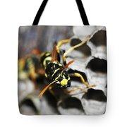 Common Wasp Vespula Vulgaris Tote Bag