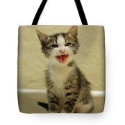 3 Day Old Kitten Tote Bag