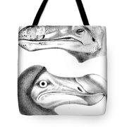 Dodo Bird, Hunted To Extinction Tote Bag
