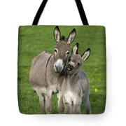 Donkey Mother And Young Tote Bag