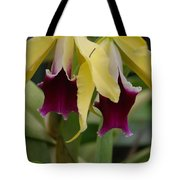 Double Orchid Tote Bag
