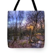 Early Morning Forest Pond Tote Bag