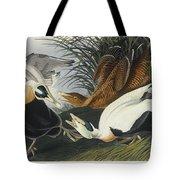 Eider Duck Tote Bag