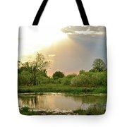 Evening Shadows Tote Bag