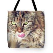 Face Sleeping Cat Tote Bag