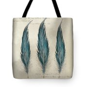 3 Feathers And Quote Tote Bag