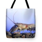 Female Rusty Crayfish Tote Bag