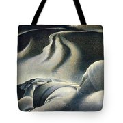 File7245 Andrew Wyeth Tote Bag