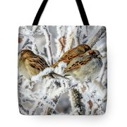 3 Frosty Friends Tote Bag