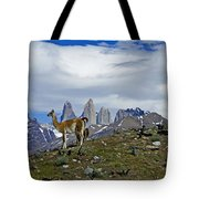 Guanacos In Torres Del Paine Tote Bag