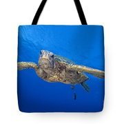 Hawaii, Green Sea Turtle Tote Bag