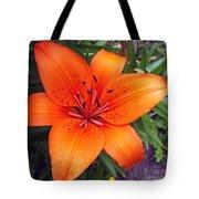 Hemerocallis Flower Tote Bag