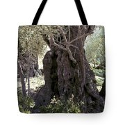 Holy Land: Jerusalem Tote Bag