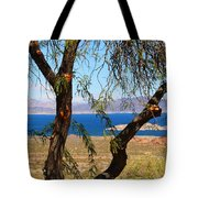 Hoover Dam Visitor Center Tote Bag