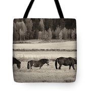 Horses Of The Fall  Bw Tote Bag