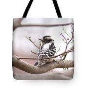 Img_0001 - Downy Woodpecker Tote Bag