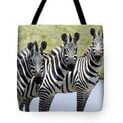 3 In A Row Tote Bag
