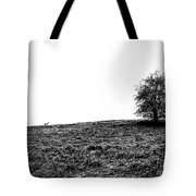 Lake District Uk Tote Bag