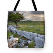 Landscape By Tote Bag