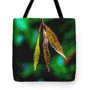 3 Leaves Tote Bag