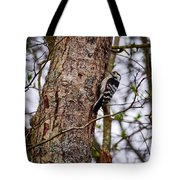 Lesser Spotted Woodpecker Tote Bag
