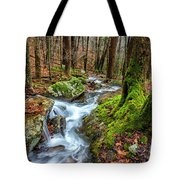Little Laurel Branch Tote Bag
