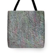 Logos 2013 Tote Bag