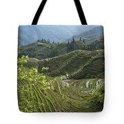 Longsheng Rice Terraces Tote Bag