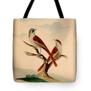 Lord's Entire New System Of Ornithology Tote Bag