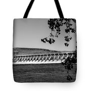 Mcnary Dam Tote Bag