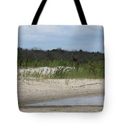 Moment In Time Tote Bag