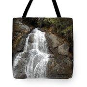 Moss Glen Falls Tote Bag