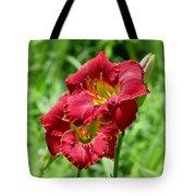 Red Lily Pair Tote Bag