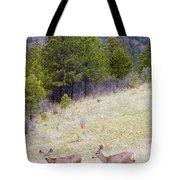 Mule Deer In The Pike National Forest Tote Bag