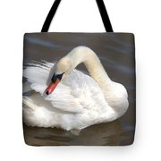 Mute Swan Grooming In Shallow Water Tote Bag